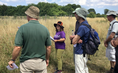 Hucking Estate discussing Ash dieback