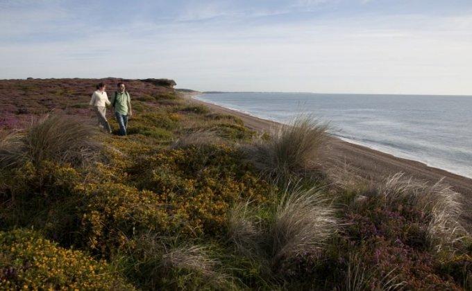 Walking at Dunwich Heath - Credit: The Suffolk Coast Destination Management Organisation