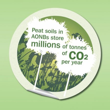 CO2-storage.jpg