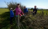 Gower Hedgerow Hub
